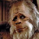 Bigfoot - Human Impersonator